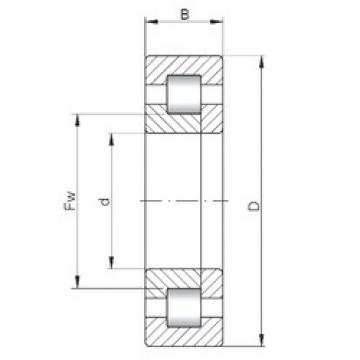 530 mm x 780 mm x 145 mm  ISO NUP20/530 roulements à rouleaux cylindriques
