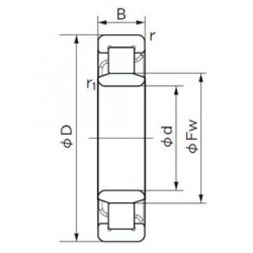 85 mm x 180 mm x 60 mm  NACHI NU 2317 roulements à rouleaux cylindriques