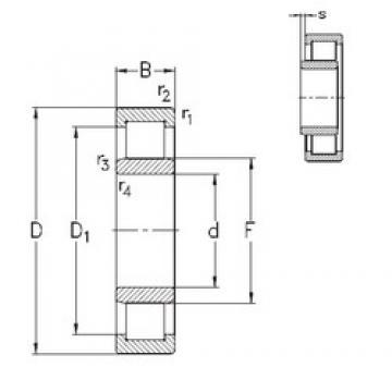 130 mm x 280 mm x 58 mm  NKE NU326-E-TVP3 roulements à rouleaux cylindriques