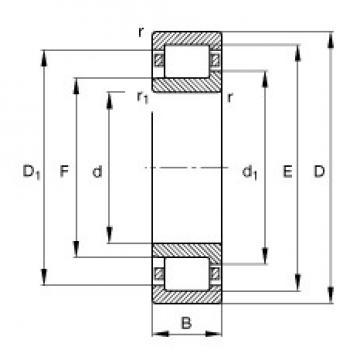 60 mm x 110 mm x 22 mm  FAG NJ212-E-TVP2 roulements à rouleaux cylindriques