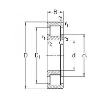 140 mm x 300 mm x 102 mm  NKE NUP2328-E-M6 roulements à rouleaux cylindriques
