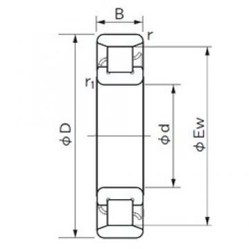 45 mm x 75 mm x 16 mm  NACHI N 1009 roulements à rouleaux cylindriques