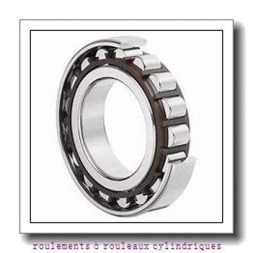 Toyana NUP2210 E roulements à rouleaux cylindriques