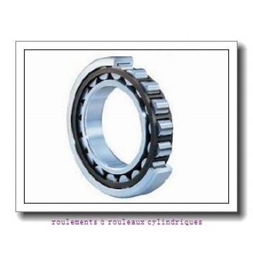 Toyana NUP39/500 roulements à rouleaux cylindriques