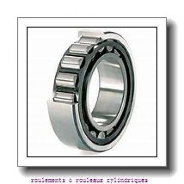 50 mm x 90 mm x 20 mm  CYSD NJ210+HJ210 roulements à rouleaux cylindriques