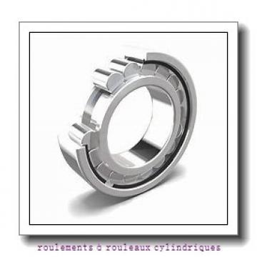 Toyana NP313 E roulements à rouleaux cylindriques