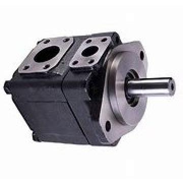 DENISON T6E-050-2R03-A1 pompe à palettes